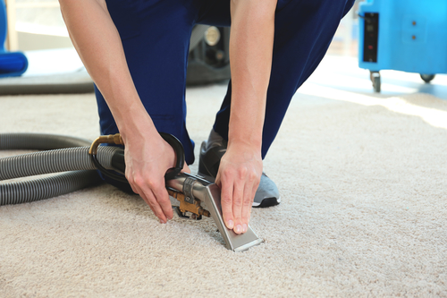 Selling Your Home Dont Overlook Carpeting and Upholstery Prep